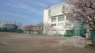 DSC_0940.JPG